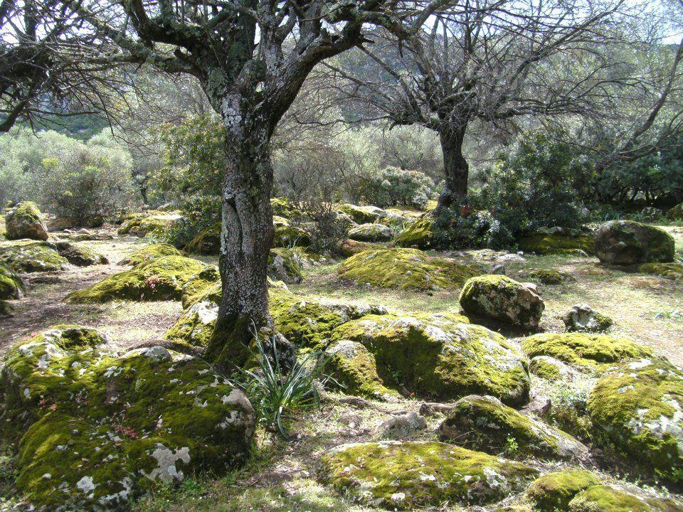 Wanderung zur Cala Goloritze